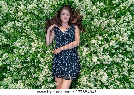 Young woman outdoors lying down in white lavender flowers. Female model posing in natural white field. Girl in black dress
