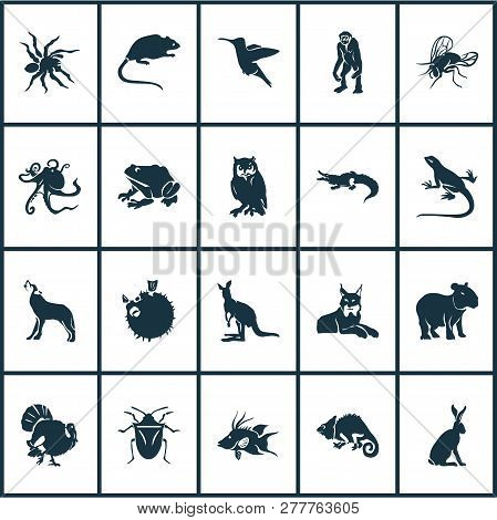 Fauna icons set with turkey, wolf, capybara and other joey elements. Isolated vector illustration fauna icons. poster