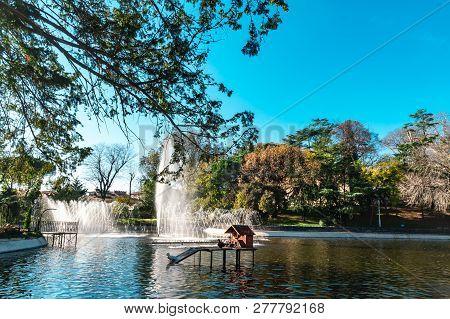 Small Lake In Autumn