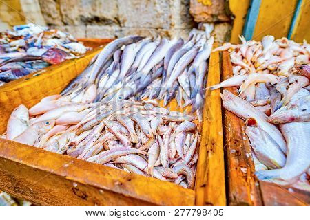 The Fish Market In Old Cairo Offers Variety Of Fresh Sea Fish, Caught In Red And Mediterranean Seas,