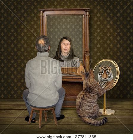The Balding Man On A Chair And His Cat Look In The Different Mirrors At Home. They See The Funny Ref