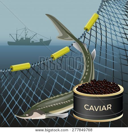 Sturgeon Fish And Black Caviar On The Background Of The Marine Nets And Fishing Ship. Vector Illustr