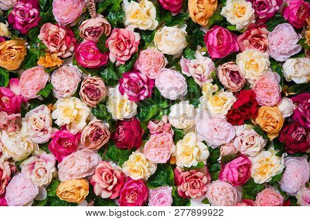 Wedding Decoration - Close Up Of Flowers Wall Background With Beautiful Colorful Roses And Peonies