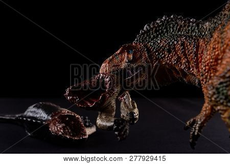 Acrocanthosaurus Biting A Dinosaur Body On Dark Background