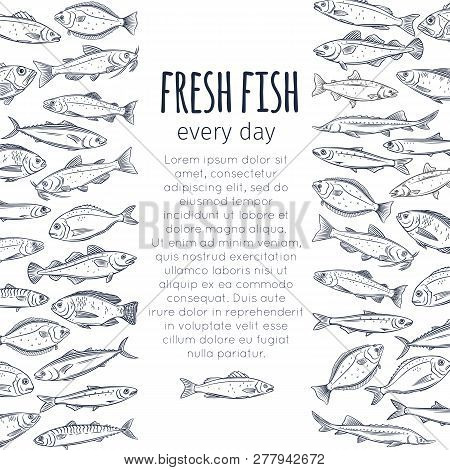 Fish Background. Vector Page Seafood Design With Bream, Mackerel, Tunny Or Sterlet, Codfish And Hali