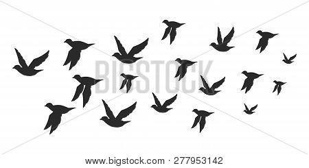 Flock Of Doves Or Pigeons Black Silhouette In Flying. Vector Flat Illustration Of Bird Migration Iso