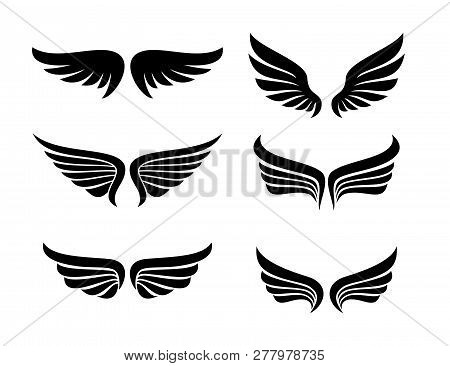 vector star wings logo wing logo company icon wing flying eagle wing brand and logotype wing bird illustration set of wings isolated black on white background poster id 277978735 vector star wings logo wing logo