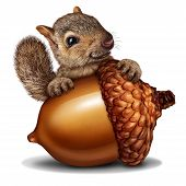 Funny squirrel holding a giant acorn tree nut as a wealth or wealthy metaphor for business and financial savings in a 3D illustration style. poster