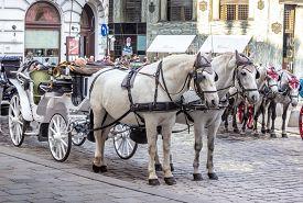 Vienna / Austria -  October 10 2014: Horse carriages on St. Michael square (Michaelerplatz)