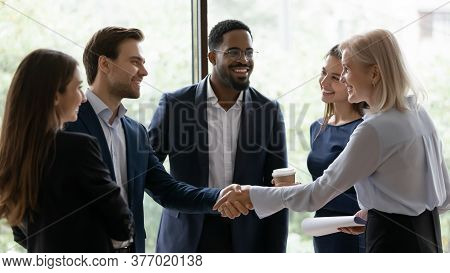 Middle Aged Businesslady Handshake Greeting Business Partner Express Respect