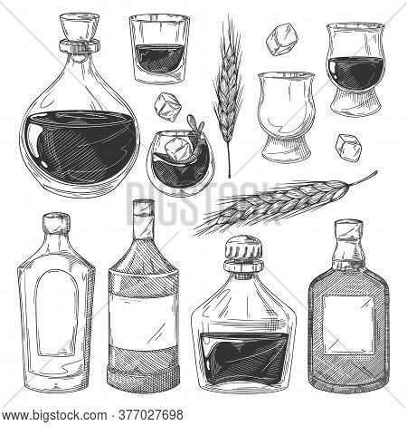 Whiskey Bottles Sketch Set. Isolated Scotch Whiskey Drink Glasses, Bottles With Blank Labels, Ice Cu