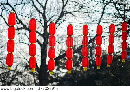 Chinese Lunar New Year Red Lanterns Decorations In Belgrade Fortress Kalemegdan Park In Belgrade, Ca