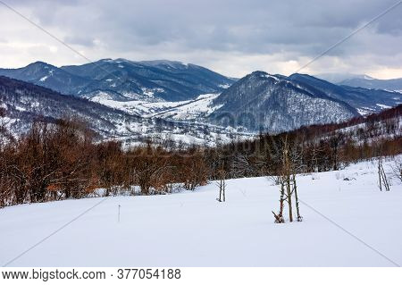 Cloudy Winter Morning In Mountains. Tree On Snow Covered Field. Carpathian Rural Landscape. Village