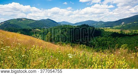Pasture On A Sunny Day In Mountains. Wonderful Countryside Landscape Of Carpathians. Fluffy Clouds O