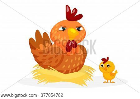 Poultry Bird. Mother Hen Sitting In Straw Nest And Little Baby Chicken Vector Illustration. Farm Cre