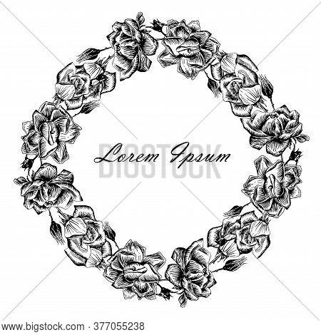 Rose Background Frame, Lorem Ipsum. Flowers Stroke Monochrome Hand Drawn Ink Sketch For Web, For Pri