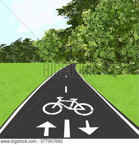 Bicycle Path, Bike Path, Summer, Meadow And Forest, Color Vector Image