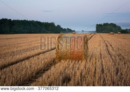 Round Hay Bales On Stubble And Forest On The Horizon, Evening Summer View