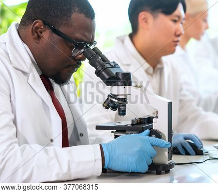 Scientist working in lab. Doctors making medical research. Biotechnology, chemistry, science, experiments and healthcare concept. Day light and window background.
