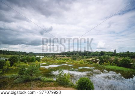 Wetlands In Wild Scandinavian Nature With Swamp And Pine Forest