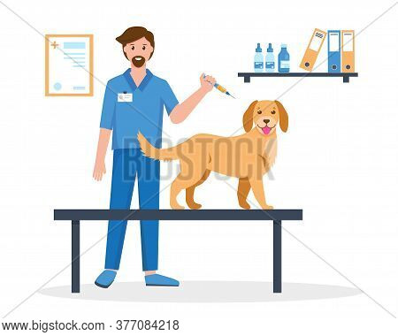 Pet Vaccination Concept. Veterinarian Doctor Making Vaccine Injection To A Dog In Vet Clinic. Medica