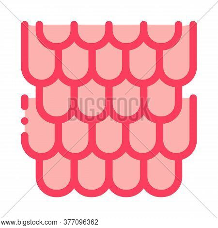 Shingles Roof Icon Vector. Shingles Roof Sign. Color Symbol Illustration