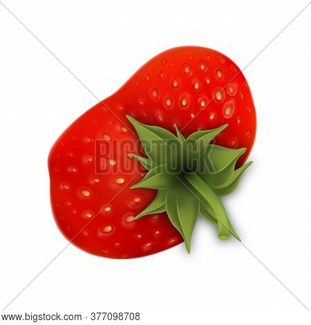Strawberry Fruit With Green Leaves Top View Vector. Aromatic And Delicious Ripe Strawberry Snack. Fr