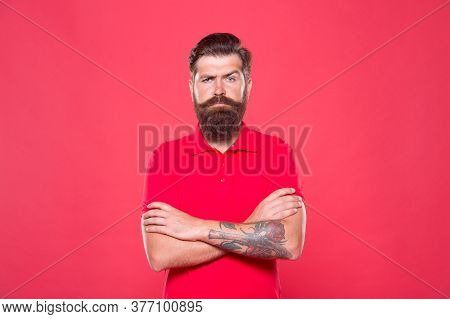 Barbershop Model. Perfect Male. Portrait Of Bearded Man Red Background. Brutal Caucasian Guy With Mu