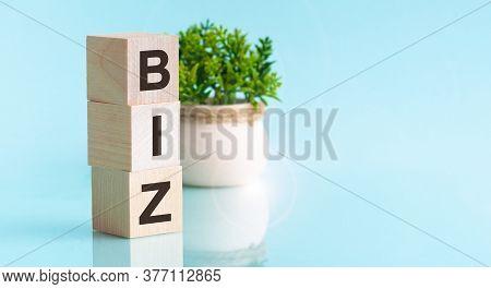 Biz - Text In Wooden Building Blocks, Blu Backgrounds