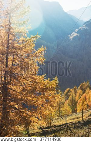 Beautiful Mountain Landscape In The Autumn Alps