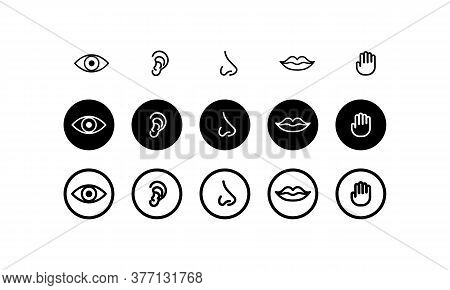Five Human Senses. Hearing, Smell, Sight, Taste And Touch. Vector On Isolated White Background. Eps