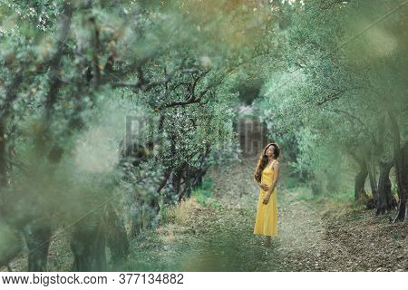 Woman In Yellow Summer Linen Dress In Olive Tree Grove. Rustic Style. Portrait Of Beautiful Curly Br