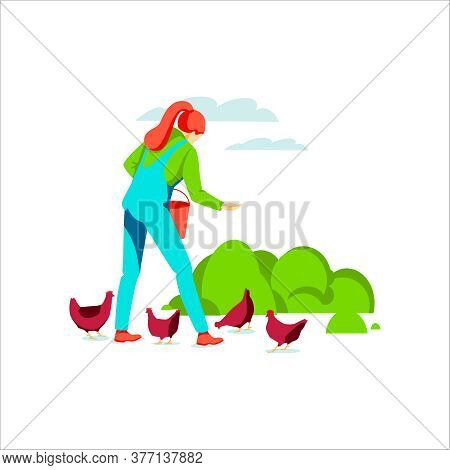 Woman Farmer Feeding Chickens With Grain. Poultry Breeding. Agricultural Worker Taking Care Of Birds