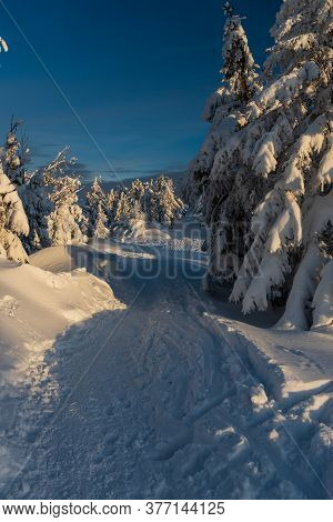 Witer Moutain Scenery With Snow Covered Hiking Trail, Frozensmall  Trees And Clear Sky Bellow Velka