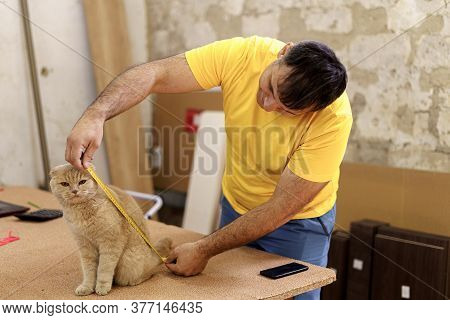 Sweet Moments With Domestic Animals. Portrait Of Satisfied Man Measuring His Cute Cat On Carpentery
