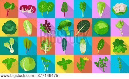 Vegetable Lettuce Flat Vector Icon.illustration Of Isolated Flat Icon Vegetable Salad . Vector Illus