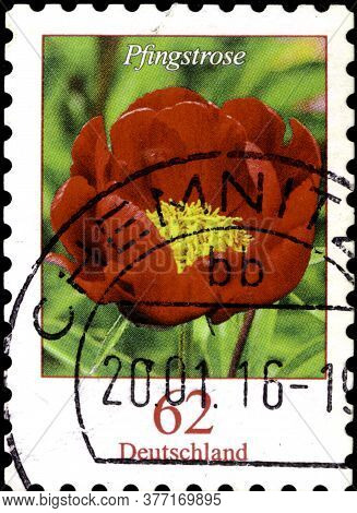 02 09 2020 Divnoe Stavropol Territory Russia The Postage Stamp Germany 2014 Flowers Paeonia Sp. - Pe