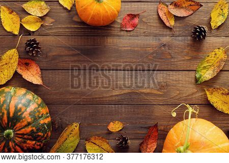 Happy Thanksgiving Concept. Autumn Frame With Ripe Orange Pumpkins, Fallen Leaves, Dry Flowers On Ru