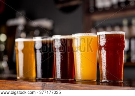 Craft Beer And Industry. Lager, Ale And Light, Dark, Unfiltered Beer In Glasses On Wooden Bar Counte