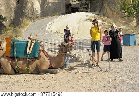 Camel Near A Rock Formation In Turkey. Cappadocia