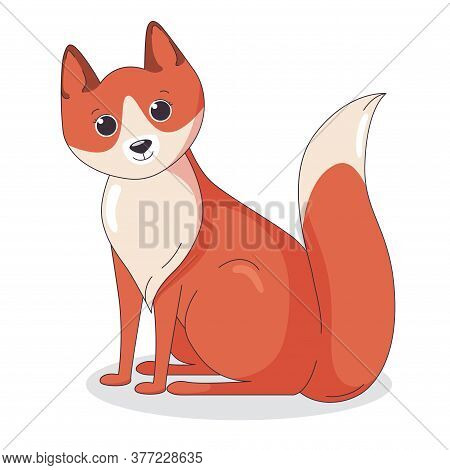 Red Fox With Bushy Tail On White Background. Sitting Predator. Vector Illustration In Cute Cartoon S