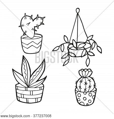 Hand Drawn Set With House Plants. In Doodle Style, Black Outline Isolated On White Background. Cute