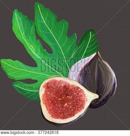 Fig Cartoon Elements Set. The Whole Exotic Fruit, Fig Leaf, Cut Figs On Gray Background. Purple, Red