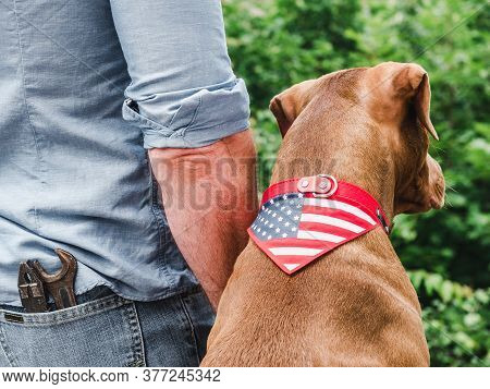 Handsome Man, Charming Puppy And American Flag