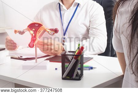 Gynecologist Doctor Examines The Sex Hormones Of The Girl. The Concept Of A Study Of The Reproductiv