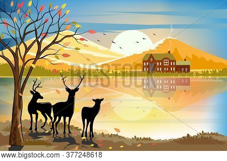 Vector Illustration Of Panorama Autumn Landscape In Countryside, Forest Trees With Leaves Falling An