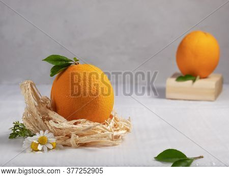 In The Foreground There Is An Orange In A Nest Of Chips And Wild Camomiles On A White-gray Backgroun