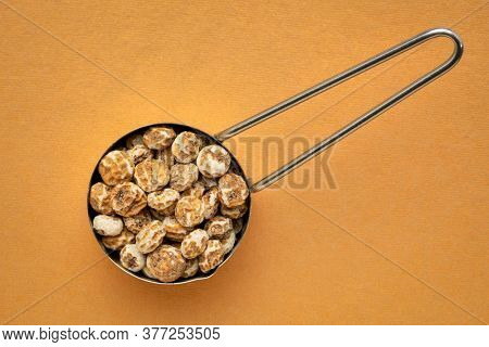 organic peeled tiger nuts, a rich source of resistant starch, top view of a metal measuring scoop