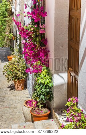 Flowers At The Entrance Of A Traditional White House In Zahara, Spain
