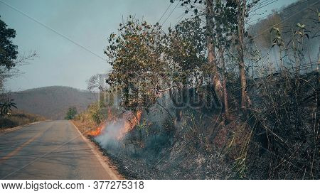 Burning Crop On Countryside . Ecosystems Crisis. Toxic Haze From Dry Grassland Fire.